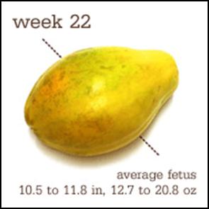 week 22 1