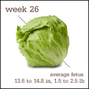 Week 26 1