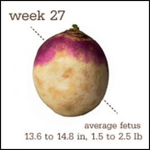 Week 27 1